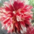 Flower by Evon Kurtz