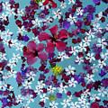 Flower Fantasy Guatemala by Kurt Van Wagner