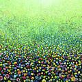 Flower Field Riot by Geoff Greene