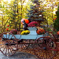 Flower Filled Wagon by Catherine Gagne