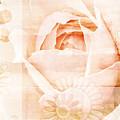 Flower Garden by Frank Tschakert
