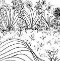 Flower Garden by Lynn Saahir