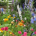 Garden Delight by Marta Robin Gaughen