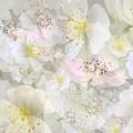 Flower Girls Path by Gae Helton