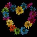 Flower Heart by Jodi Vetter