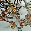 Flower Icicle. by Olga Vlasova