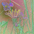 Flower Meadow Line by Mando Xocco