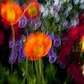 Flower Motion by Kelley King
