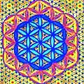 Flower Of Life Fractle by Chandelle Hazen