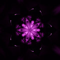 Flower Of Life by Michael Grubb