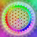 Flower Of Live - Rainbow Lotus 2 by Dirk Czarnota