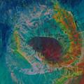 Flower Oil On Canvas 90x100cm by Tamy Moldavsky