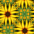 Flower Pattern by Linda Sannuti