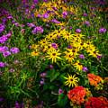 Flower Planter In Kilrush, County Clare, Ireland by James Truett
