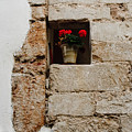 Flower Pot In Niche by Thomas Marchessault