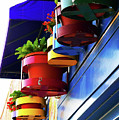 Flower Pots by Angela Wright