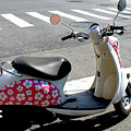 Flower Power For A Montreal Motor Scooter by Nina Silver