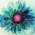 Flower Power by Jerri Moon