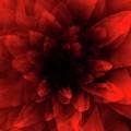 Flower  Red Shade by Johan Lilja