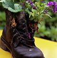 Flower Shoe Pot by Jim Corwin
