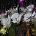 Flower Shop Window 3 by Robert Ullmann
