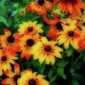 Flower Sunshine by Rochelle Berman