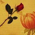 Flower Talk With Wallpaper by Marsha Heiken