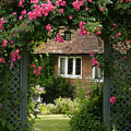 Flower Trellis England by Michael Hudson