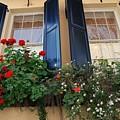 Flower Window In Charleston Sc by Susanne Van Hulst
