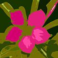 Flower Work Number 17 by David Lee Thompson