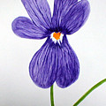 Flower3 by Sandy Wager