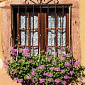 Flowered Window # II by Paul MAURICE