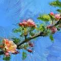 Flowering Apple Branch by Dragica Micki Fortuna