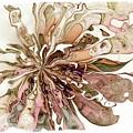 Flowers 004 by Amanda Moore