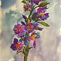 She Blooms by Bonny Butler