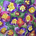 Pansy Party by Bonny Butler