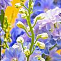 Flowers 39 by Ken Lerner