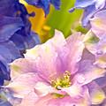 Flowers 42 by Ken Lerner