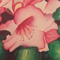 Flowers by Alexius Brown