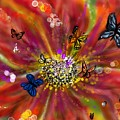 Flowers And Butterflies by Darren Cannell