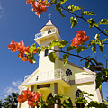 Flowers And Church On Takapoto Atoll by Tim Laman