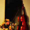 Flowers And Violin by Bill Cannon