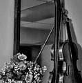 Flowers And Violin In Black And White by Bill Cannon