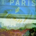 Flowers For Paris by Lainie Wrightson