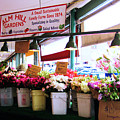 Flowers For Sale by Lori Tambakis