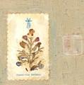 Flowers From Bethlehem  by Alice Kelsey