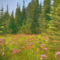 Flowers In A Mountain Glade by Mitch Spence