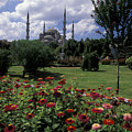 Flowers In Sultanahmet Square by Richard Nowitz