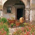 Flowers In The South Wing, Mission San Juan Capistrano, California by Denise Strahm