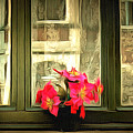 Flowers On A Ledge by Anthony Caruso